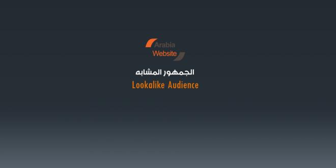 الجمهور المشابه Lookalike Audience